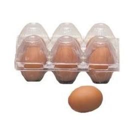 Huevos plastico