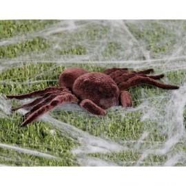 Tarantula 25 cms araña peluda